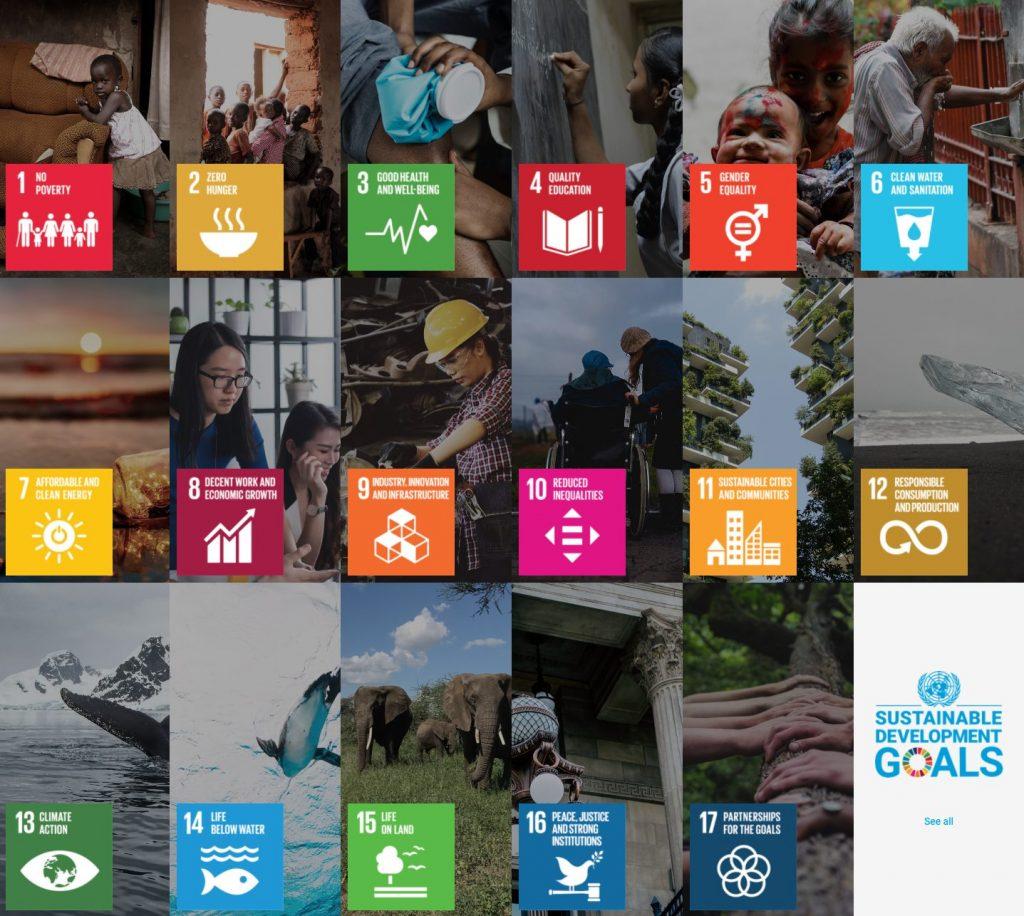 Nachhaltige Geldanlagen: Sustainable Development Goals Übersicht - Wie kann man nachhaltig Geld anlegen?